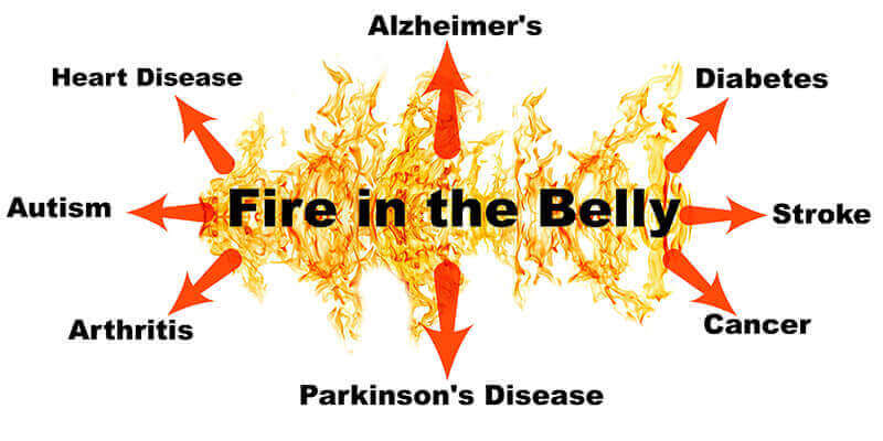Prof keith scott mumbys fire in the belly book the biggest primary common factor behind an astounding array of diseases including allergies autoimmune disease diabetes heart disease mental illness fandeluxe Gallery