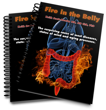 fire in the belly book, 2 copies